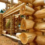 Из какого дерева строить баню