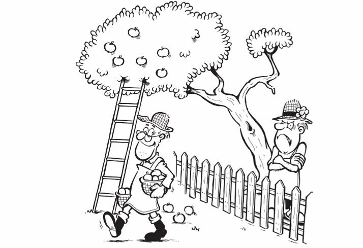 Несоблюдение дистанции посадок плодовых деревьев от соседнего забора