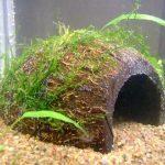 Как изготовить самодельный декор для аквариума