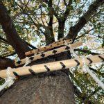 Веревочная лесенка из подручных материалов
