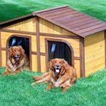 Теплая будка для собаки на придомовом участке