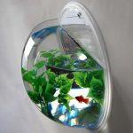 Мини-аквариум из старой лампы своими руками