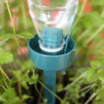 Как из простой бутылки и веревки сделать самополив для растений на грядке
