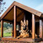 Теплая будка для уличной собаки своими руками