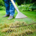 Из чего смастерить веерные грабли для сбора сухой листвы и травы