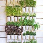 Как сшить тканевый органайзер под посадку рассады зелени на кухню