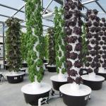Что такое гидропонная башна и как садоводу смастерить ее самостоятельно