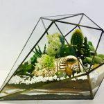 Как сделать красивый флорариум для украшения интерьера