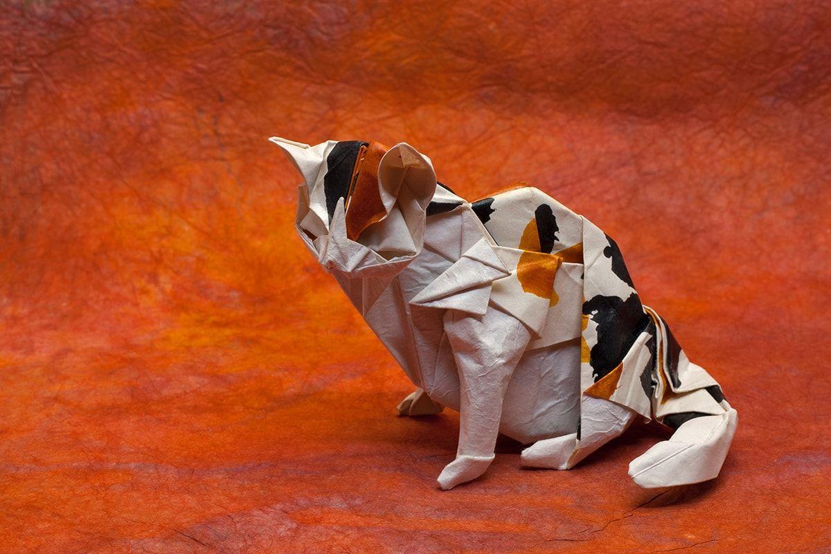 кот оригами картинка дома финской