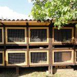 Инструкция по изготовлению надежной клетки для кроликов на дачу