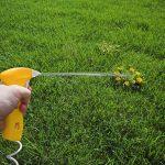 Как сделать смесь для удаления сорняков на дачном участке