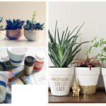 10 вариантов креативных горшков для цветов из подручных материалов