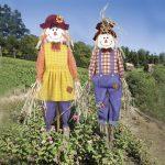 5 эффективных способов защитить урожай от птиц