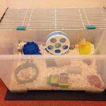 Клетка для хомячка из большого пластикового контейнера